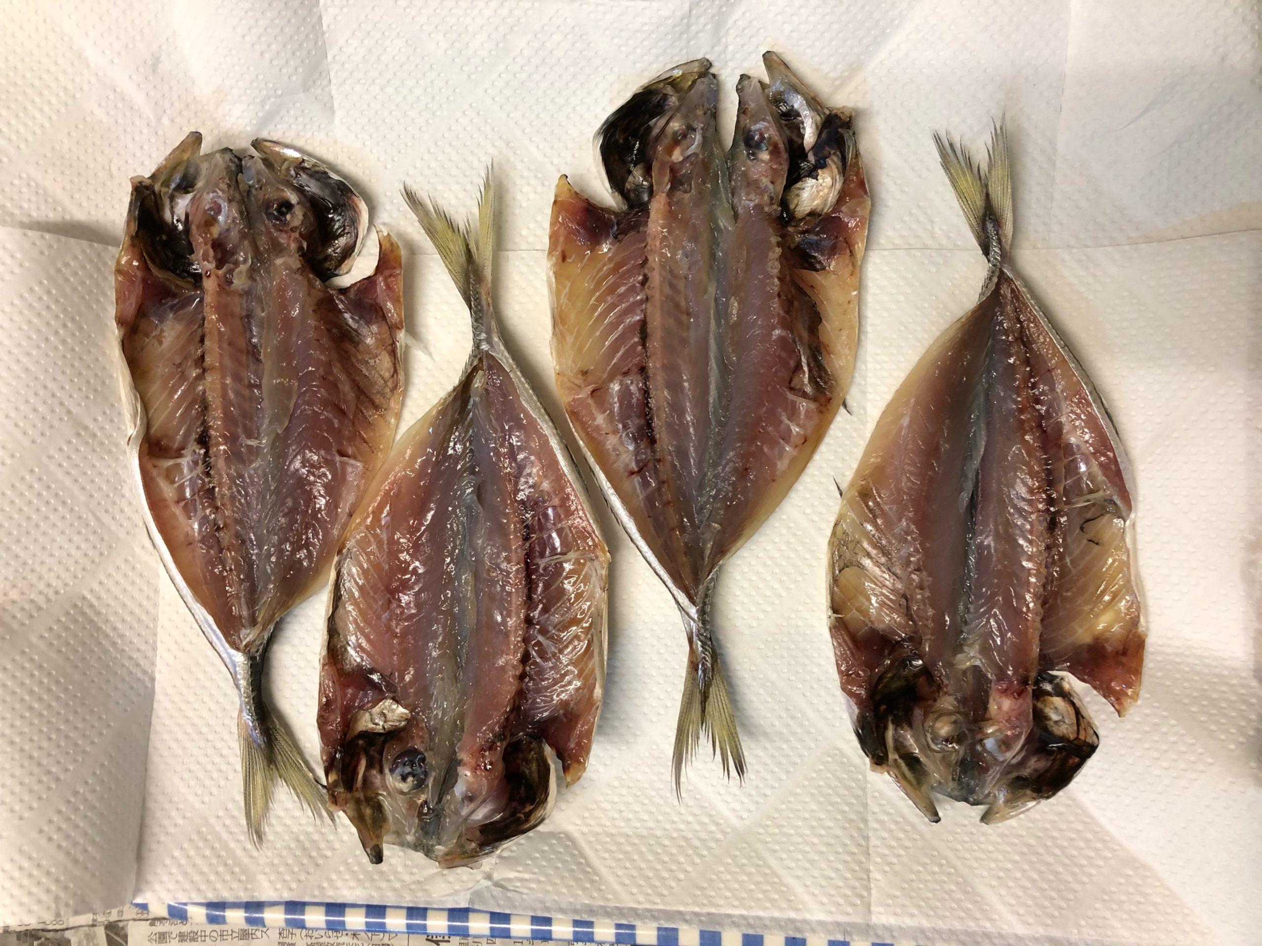 冷蔵庫に入れる場合の魚の並べ方